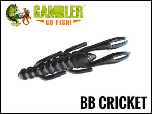 GAMBLER/BB Cricket