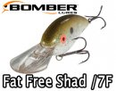 BOMBER/Fat Free Shad /7F