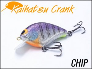 開発クランク/Chip