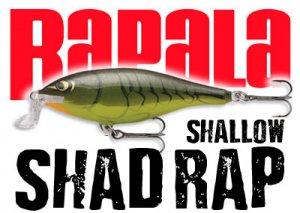 Rapala ラパラ/ Shallow Shad RAP シャローシャッドラップ【SSR-5/7/9】【新色入荷】