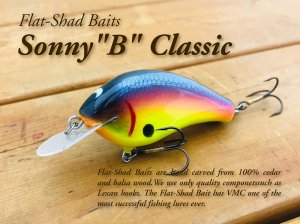 <img class='new_mark_img1' src='https://img.shop-pro.jp/img/new/icons55.gif' style='border:none;display:inline;margin:0px;padding:0px;width:auto;' />Flat Shad Baits/Sonny B Classic