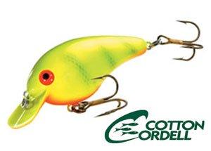 cotton cordell/ BIG-O ビッグO 【C78】