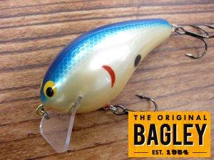 Bagley/B-3
