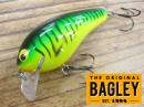 Bagley/KILL'R B-2