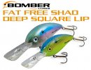 BOMBER/ Fat Free Shad Deep Square Lip 【6F/7F】