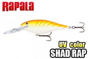 Rapala/SHAD RAP 5/7 【UVカラー!】