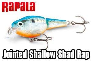 Rapala/JOINTED SHALLOW SHAD RAP 【5/7】 【限定復刻商品】