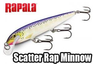 Rapala/ Scatter Rap Minnow