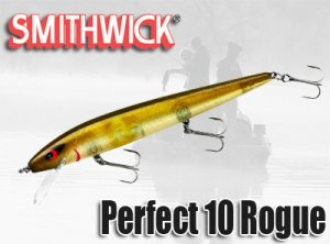 SMITHWICK/Perfect 10 Rogue パーフェクト 10 ログ