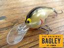 Bagley/Diving B-1