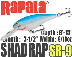 Rapala/SHAD RAP 9 【新色入荷】