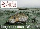 六度九分/キングマーマー 【W hook】