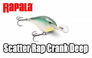 Rapala/ Scatter Rap Crank Deep
