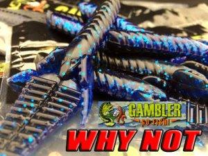 GAMBLER/WHY NOT