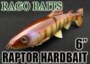 RAGO BAITS/RAPTOR HARDBAIT 6