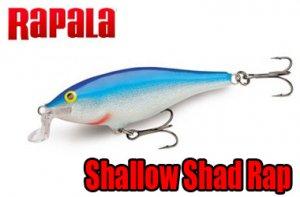 Rapala / Shallow Shad RAP 【SSR-7国内売切れカラー】