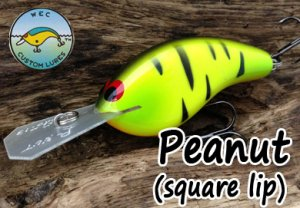 WEC CustomLures/Peanut 【square lip】