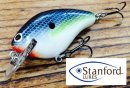 Stanford Lures/Old School SSR 【Dives to 2.ft.】