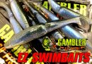 GAMBLER/EZ SWIMBAITS