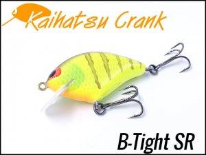 開発クランク/B-Tight SR