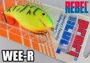 【廃盤商品!】 REBEL/WEE-R