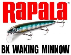 Rapala/BX WAKING MINNOW