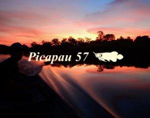 TULALA/Picapau 57 ピカパウ 57