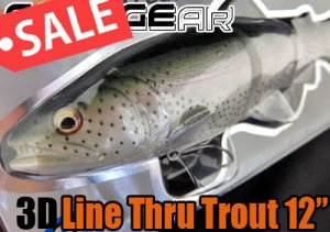 SAVAGE GEAR/3D Line Thru Trout 12