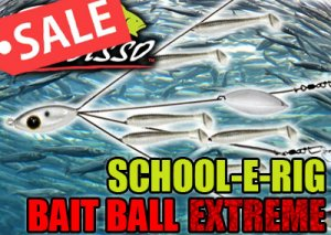 Picasso/SCHOOL-E-RIG 【Bait Ball EXTREME】