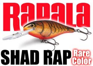 Rapala/SHAD RAP 【日本未発売カラー!】