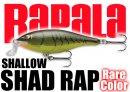 Rapala/SHALLOW SHAD RAP 【日本未発売カラー!】