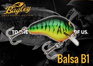 Bagley/BALSA B1