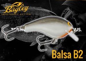 Bagley/BALSA B2