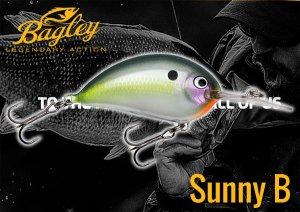 Bagley/Sunny B
