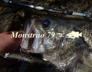 TULALA ツララ /Monstruo79 モンストロ79