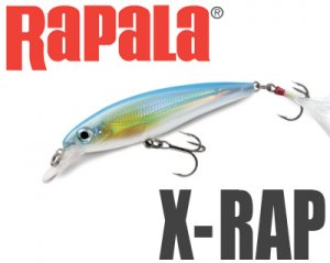 Rapala/ X-RAP 【XR-6】