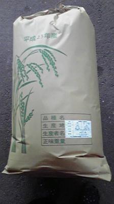 熊本産【自然栽培(無肥料)】『全粒粉小麦粉(薄力粉)』25kg【業務用】