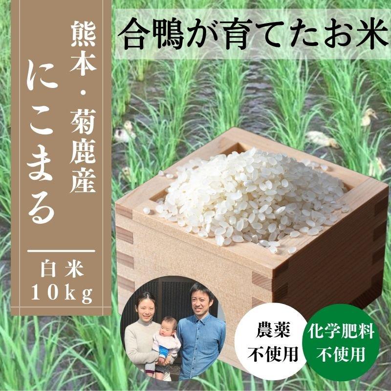 H29年産【熊本・山鹿産 農家直送】合鴨が育てた♪お米白米・10kg
