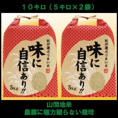H29年産新米【熊本・山都町産 農家直送】冷めても美味しい♪山間地米玄米・10kg