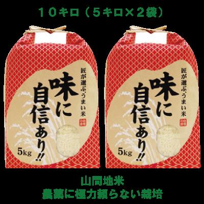 H29年産新米【熊本・山都町産 農家直送】冷めても美味しい♪山間地米白米・10kg