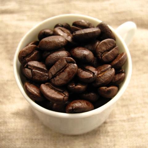 Matin マタン コーヒー豆