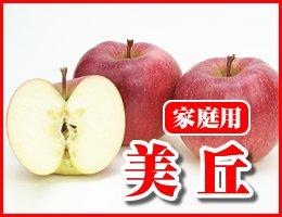 【数量限定】【12月発送】美丘 家庭用5kg(約12〜16玉)