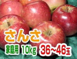 【9月上旬発送予定】さんさ 家庭用10kg(約36~46玉)