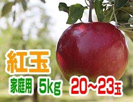 【10月中旬発送予定】紅玉 家庭用5kg(約20〜23玉)