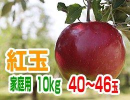 【10月中旬発送予定】紅玉 家庭用10kg(約40〜46玉)