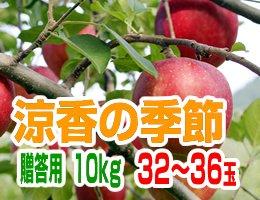 【10月上旬発送予定】早生ふじ 涼香の季節 贈答用10kg(約32〜36玉)