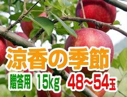 【10月上旬発送予定】早生ふじ 涼香の季節 贈答用15kg(約48〜54玉)