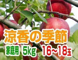 【10月上旬発送予定】早生ふじ 涼香の季節 家庭用5kg(約16〜18玉)