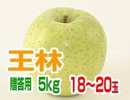 【11月上旬発送予定】王林 贈答用5kg(約18〜20玉)