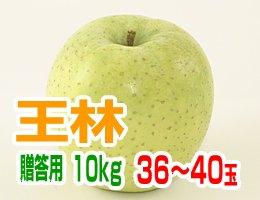 【11月上旬発送予定】王林 贈答用10kg(約36〜40玉)
